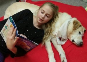 Relaxing Reading with Timba