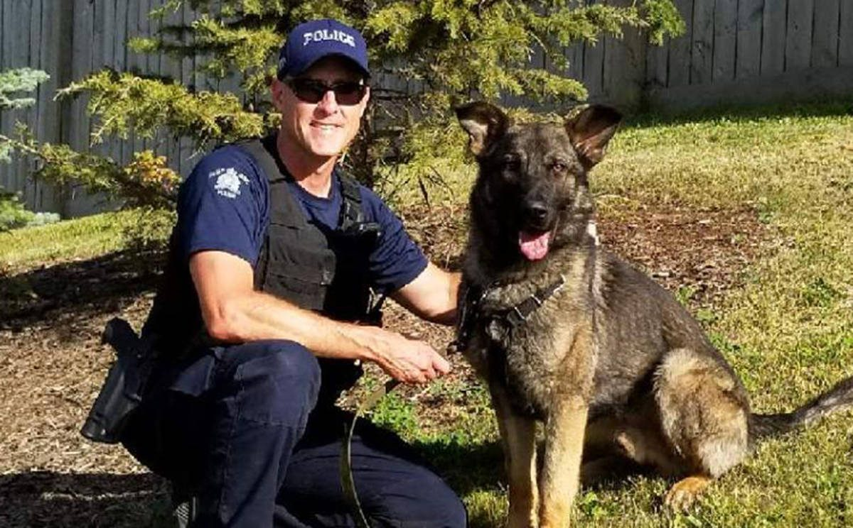 RCMP police Dog