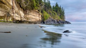 Photo of ocean and treed cliffs